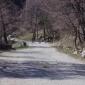 Път при Селимица, Витоша