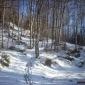 снимка Зимната пътека към Черни връх