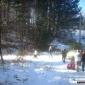 снимка на Туристи по алеята към Сопо