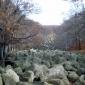 Селимица: морените на Витоша