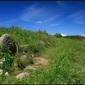 Пътека при Селимица, Витоша